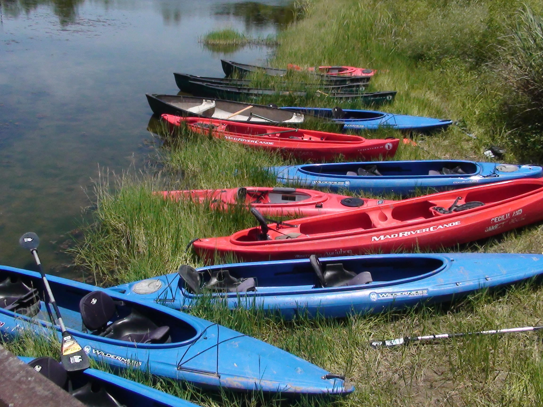 140710 Canoes and Kayaks TRAC.JPG