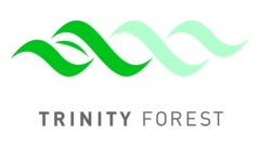 Full Color Trinity Forest Logo